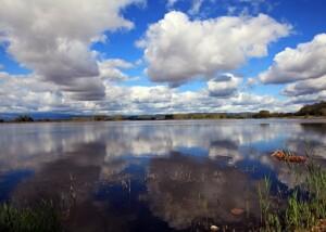 L'Oasi naturalistica del Lago di Candia