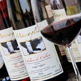 vini dell'azienda Agricola Massoglia